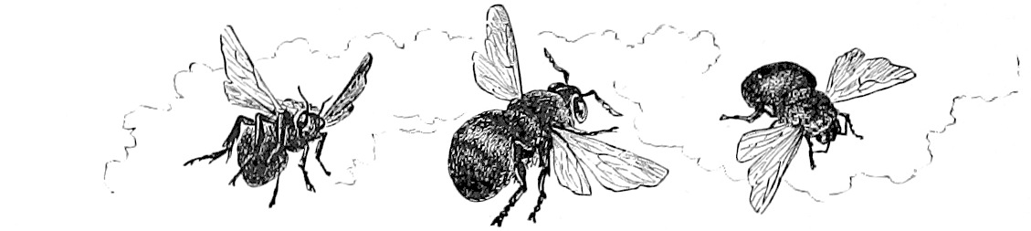 A drawing of three bees flying.