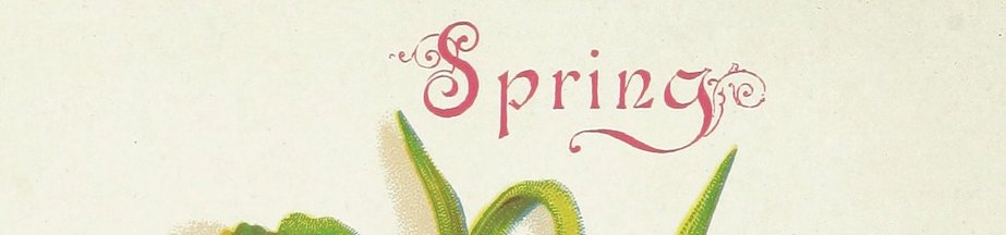A cropped image with the word Spring.