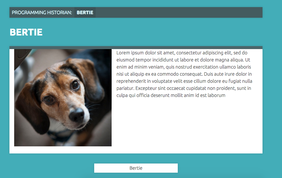 Bertie the dog is an exhibit item