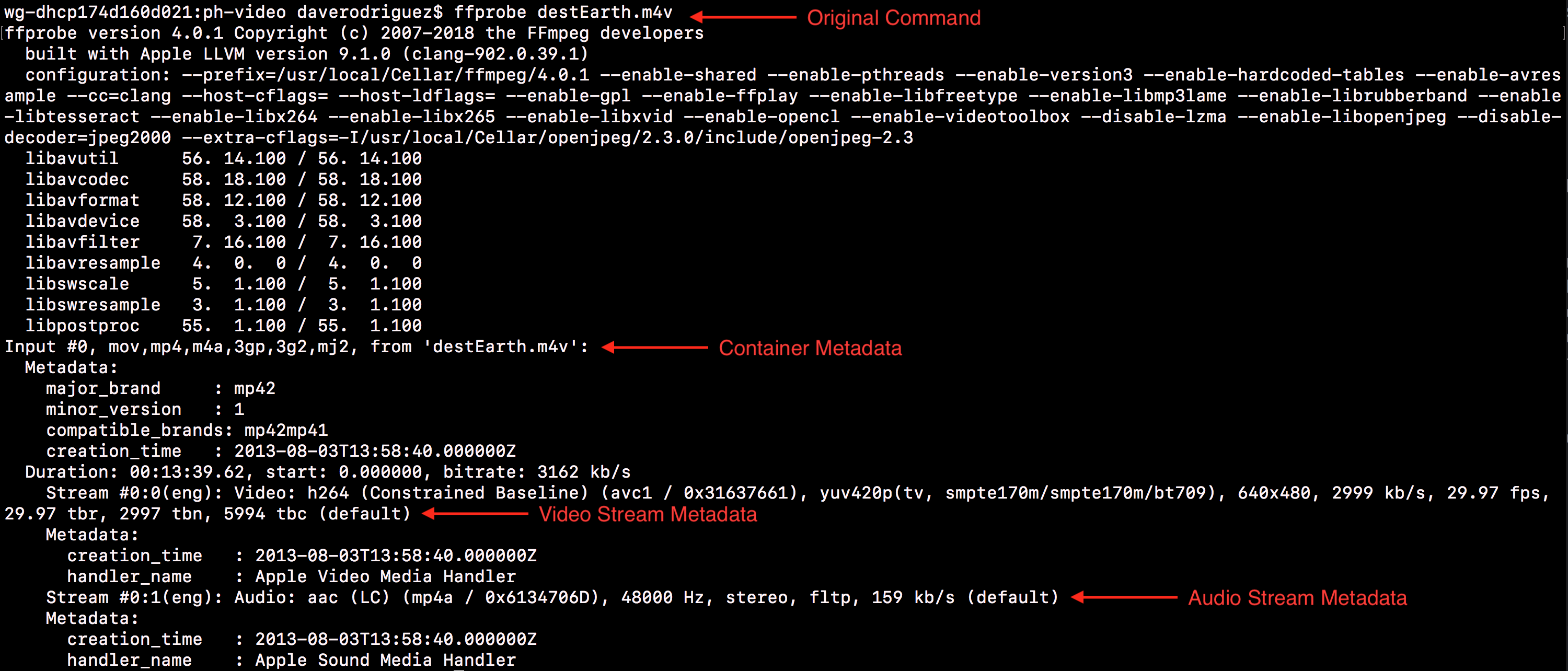 The output of a basic `ffprobe` command with destEarth.m4v